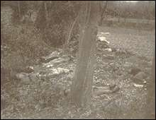 Bodies of executed Chinese in Ku LIng Temple.