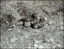 An old woman killed by a Japanese soldier outside Nanking near Tse Hsia Shan. Photo taken by an American missionary, Earnest Forster.